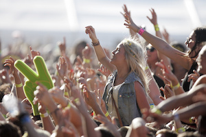 licence for festival